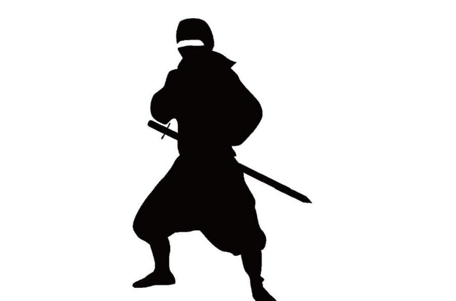 ミステリアスニッポン/精神的には忍者の末裔だらけの国