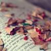 心を込めた文章は読まれる、には理屈はあるか。