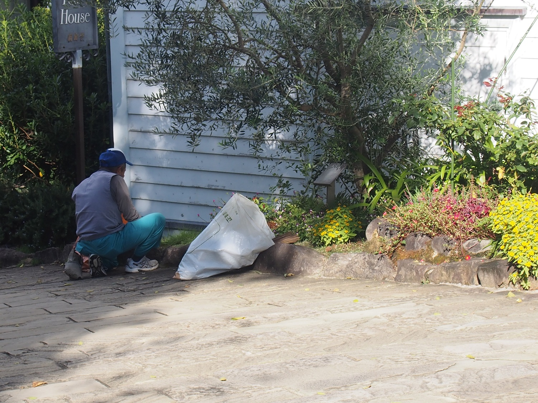 グラバー園 庭師